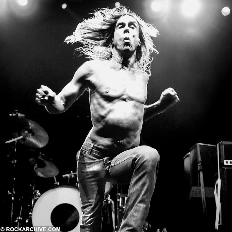 Iggy Pop (IP001STUN)