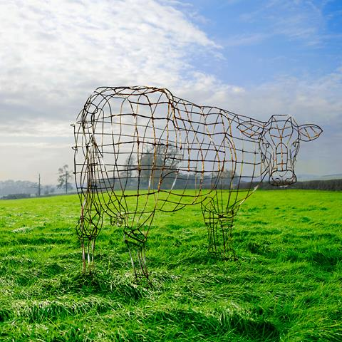 Alternative artwork by Storm Thorgerson for Pink Floyd's album Atom Heart Mother