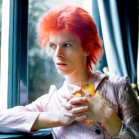 David Bowie (DB008MR)