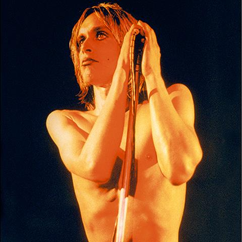 Iggy Pop (IP003MR)