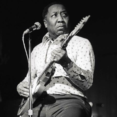 Muddy Waters (MUD01RF)
